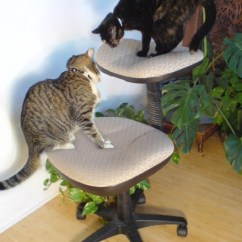 Desk Chair For Back Support Rocking Repair Kit 2 Level Cat Bed Made From An Old | Make: