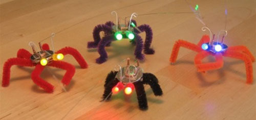 Blinkybugs Crop