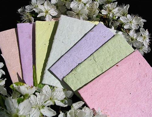 Plantablepaper