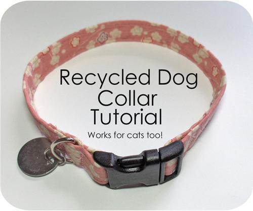 DogCollarTute.jpg
