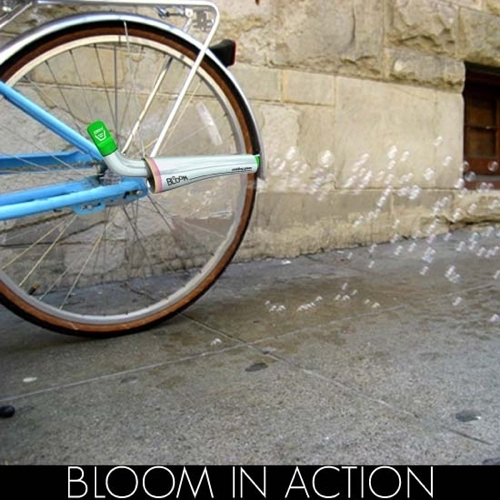 Bloominaction3 550X550