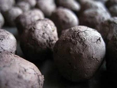 seedballs3.jpg
