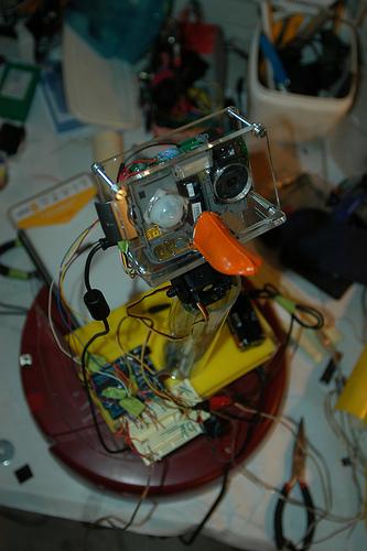 cameraDuck071108_1.jpg