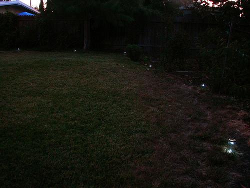 gardenLights082008_1.jpg