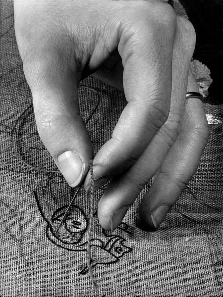 roosevelt_stitching_2.jpg