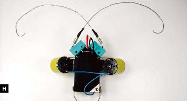 beetleBot-2h.jpg