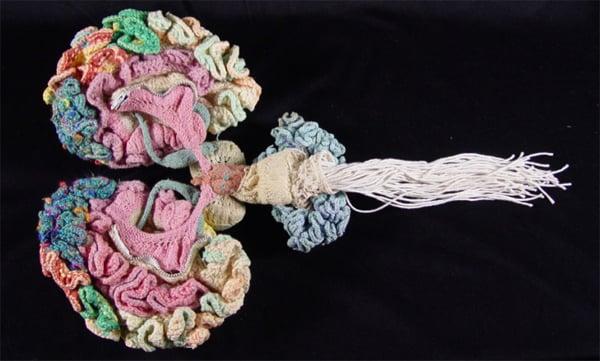 crochet_brain.jpg