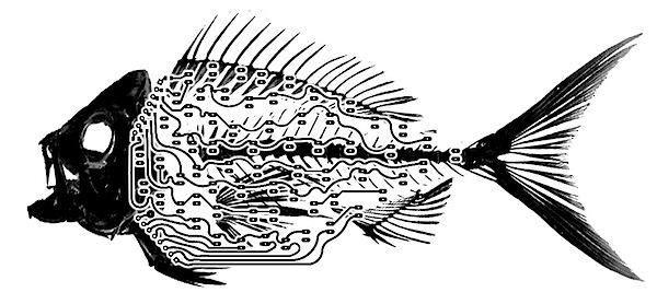 led fish   art circuitry