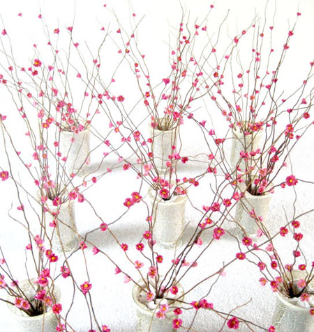 Simple Origami 3D Cherry Blossom Step by Step - Kids Can Make   477x450