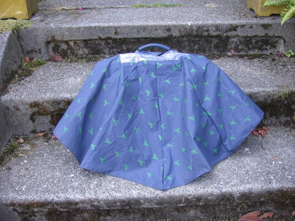 umbrella_laptop_cover.jpg