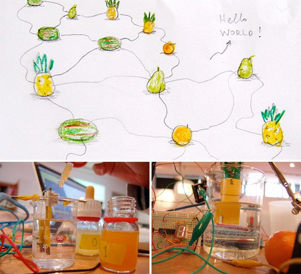 fruitcomputer_cc.jpg