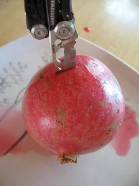 Pomegrante Puncture