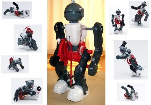 co_robot 2.jpg