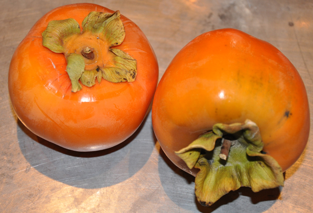 Persimmon Holidaybread Fruit
