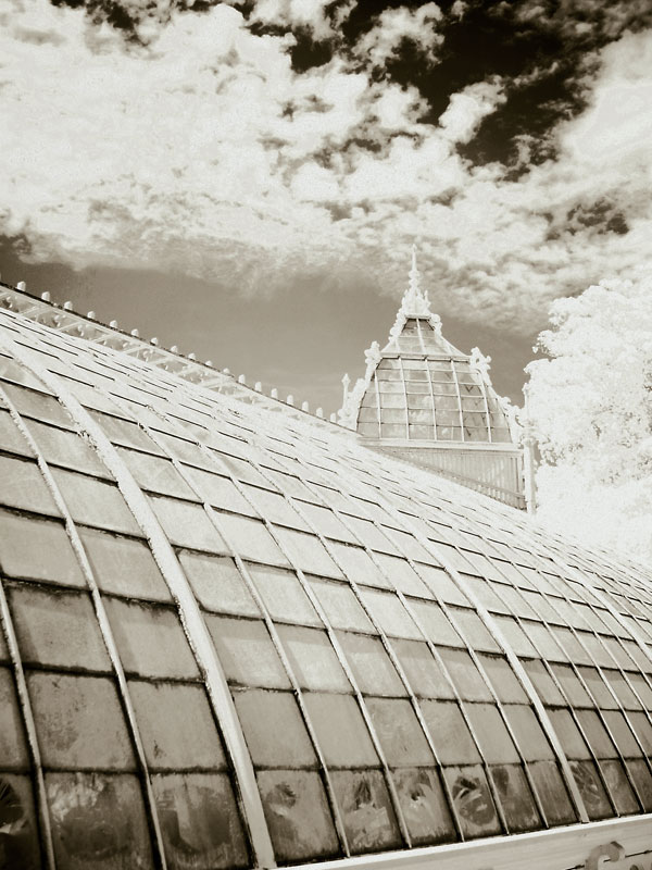 flashback-infrared-greenhouse-detail.jpg