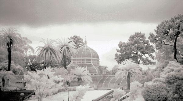 flashback-infrared-greenhouse.jpg