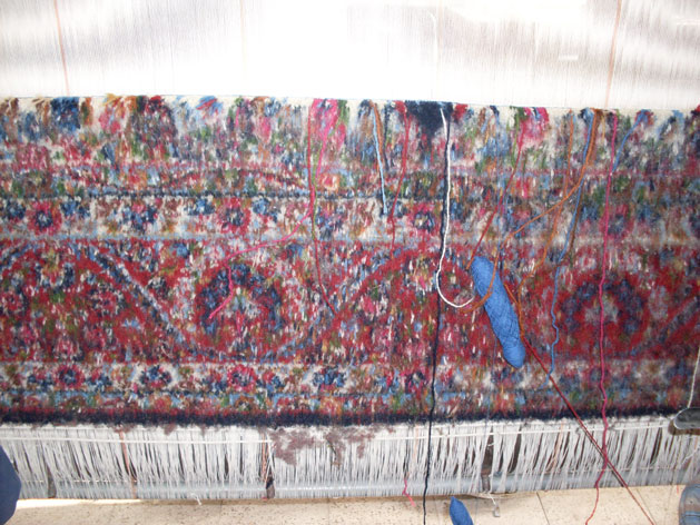 kerman-rugs-front-of-rug.jpg
