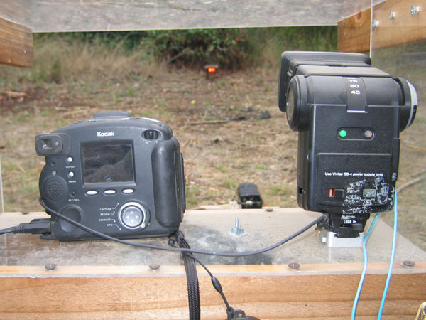 flashback-wildlife-camera-setup.jpg