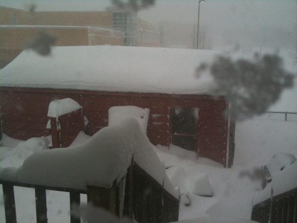 snowBread2.jpg