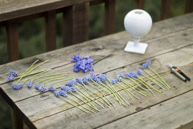spring_bluebells_02.jpg