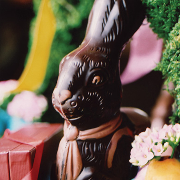 brown_pink_rabbit_629.jpg