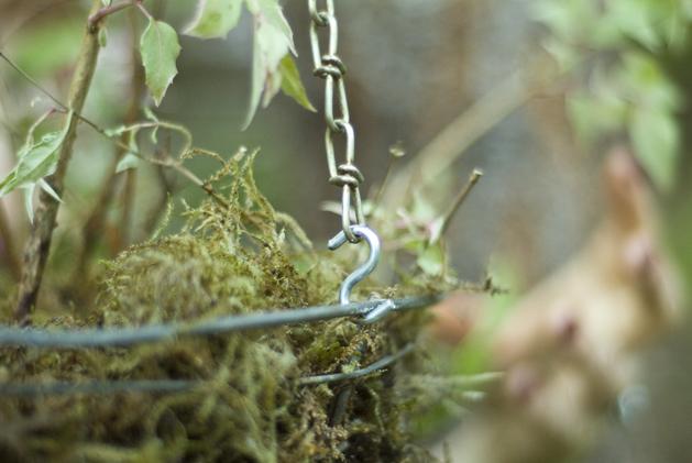 hanging_planter_0015.jpg