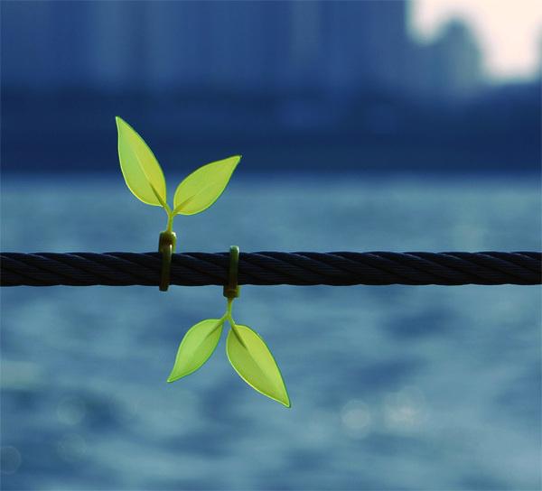 leaf_tie3.jpg