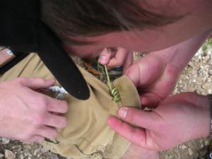 mending_shorts_using_agave.jpg