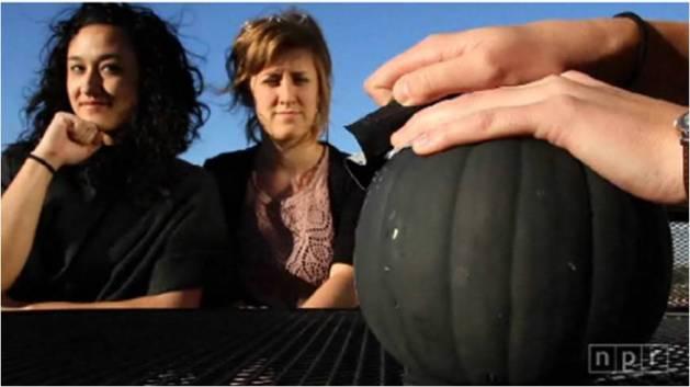 pumpkin_camera_npr.jpg