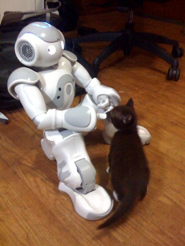 robot-census.jpg