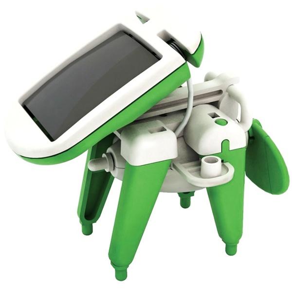 solardog.jpg