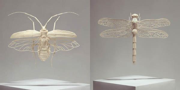 kyle-bean-matchstick-bugs.jpg