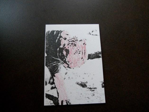 artistcard_question.jpg