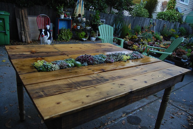 faroutflora_succulent_pallet_table.jpg
