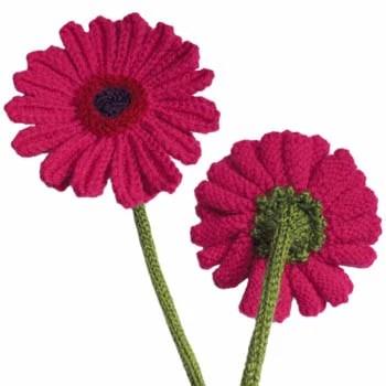 knit_gerberas.jpg