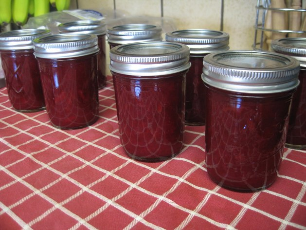 canned plums_muffintinmom_post.JPG