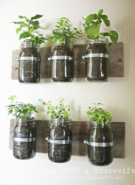 notjustahousewife_mason_jar_wall_planter.jpg
