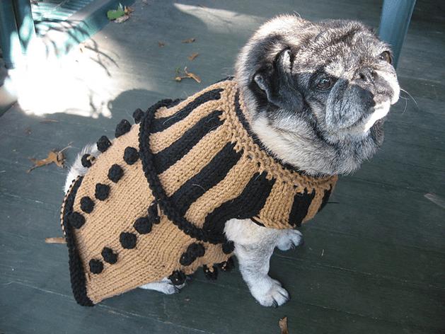 dalek_dog_sweater_pug.png