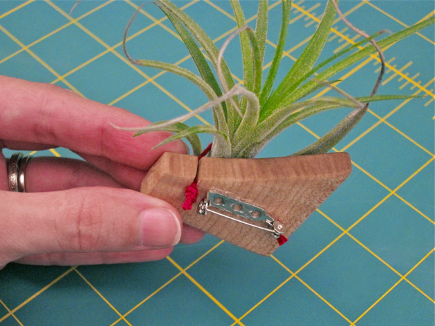 air_plant_brooch_tutorial_10b.jpg