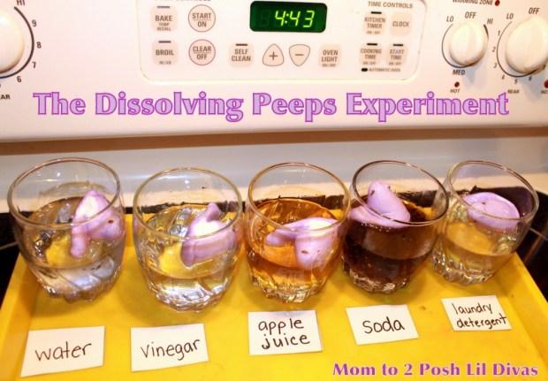 peeps dissolving experiment