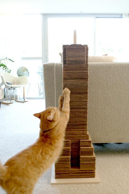 How To Skyscraper Cat Scratcher Make