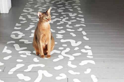 painted floor runner