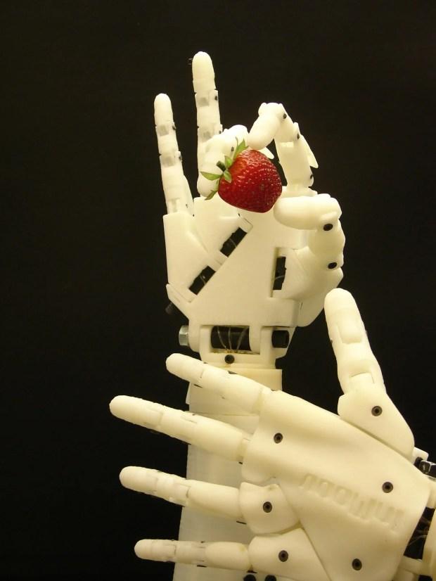 Inmoov robot hand