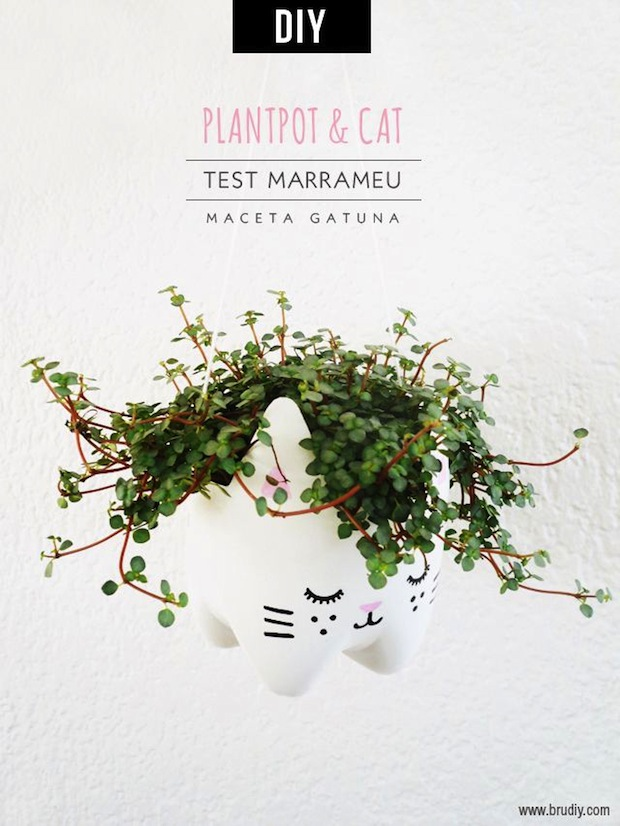 brudiy_plastic_bottle_cat_planter_01