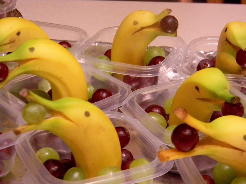 banana-dolphins-1