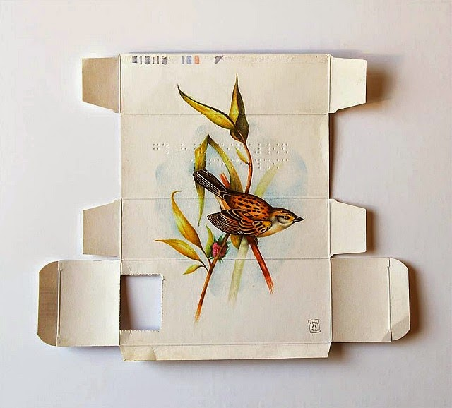 Sara Landeta's Bird Illustrations Inside Medicine Boxes