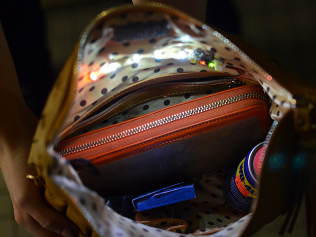 Built-In Purse Light