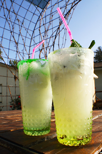 craft_mojito_float_recipe