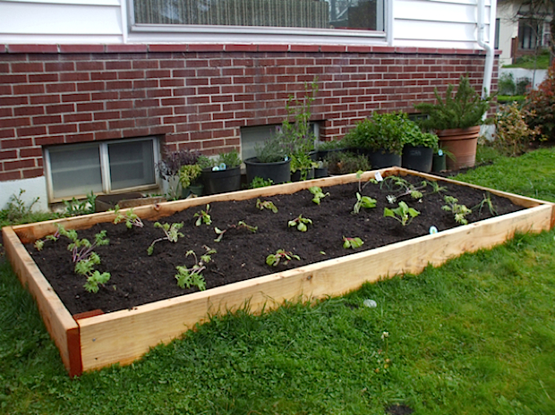 craft_raised_bed_garden