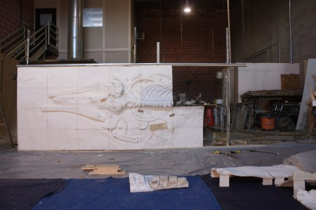 Assembling the whale fossil tiles